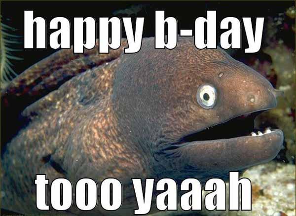 happy birthday fishing meme