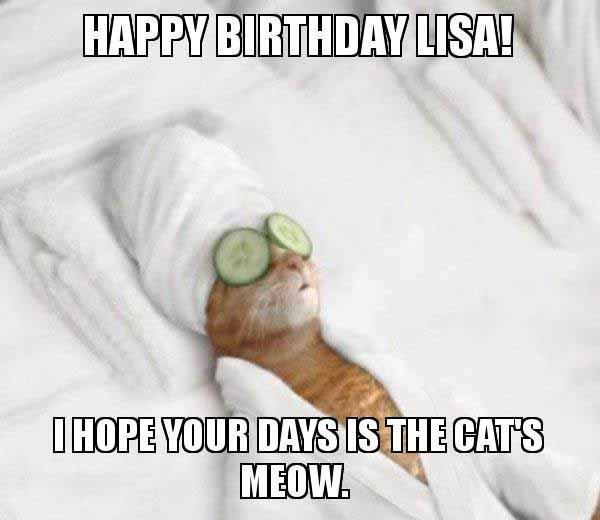 happy birthday lisa cat meme